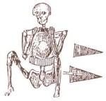 Fall River's skeleton in armor